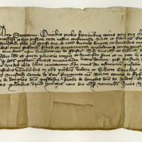 Charter by King Robert III to George, Earl of Angus, and Princess Mary Stewart, his spouse, of the fines, &c., of the Justice-Ayres of Forfarshire. Dunfermline, 9th November 1397